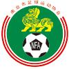 南京市足球运动协会
